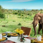 Royal Madikwe Luxury Safari Lodge, Madikwe Game Reserve
