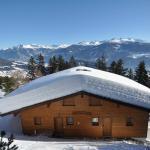 Hotel Pictures: Chalet Brune-Haute, Anzère
