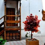 Tacima Guest house, Tbilisi City
