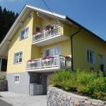 Hotel Pictures: FeWo Burgstaller, Tröpolach