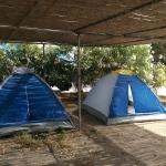 Achivadolimni Camping, Adamas