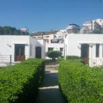 Palomas Apartments,  Agia Marina Nea Kydonias