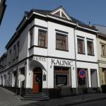 Hotel Pictures: Hotel Kaunic, Uherský Brod