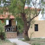 Gianna's House,  Stavros