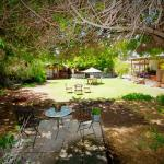 Φωτογραφίες: Dongara Breeze Inn, Dongara