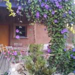 Rotem`s Guest House,  Paran