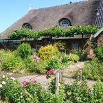 B&B Het Farm-house Natuurpark,  Twijzelerheide