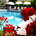 Olympus Hotel Villa Drosos, Litochoro