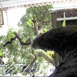 021 Hostel, Rio de Janeiro