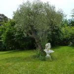Villa Elysae,  Mougins