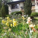 Hotel Pictures: Maison d'Hôtes Vers les Cent Ciels, Obernai
