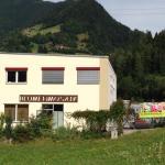 Φωτογραφίες: Apartment Blumenmosaik, Flattach