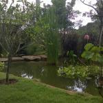 The Frog Khaoyai Resort, Mu Si