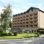 Hotel Pictures: Hotel des Alpes, Flims