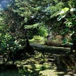 Il Ruscello di Ceraso,  Ceraso