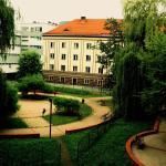 Dizzy Daisy Hostel, Wrocław