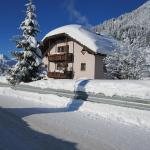 ホテル写真: Ferienhaus Höll, Russbach am Pass Gschütt