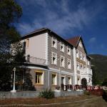 Hotel Pictures: Hôtel Lac Et Forêt, Saint-André-les-Alpes