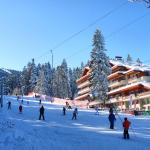 Hotel Pictures: Yanakiev Club Hotel, Borovets