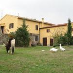 Agriturismo Casale Dell'Aldi,  Manciano