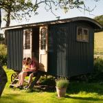Hotel Pictures: Shed and Breakfast, Bruton