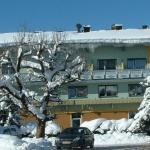 Hotel Pictures: Lammertalerhof, Abtenau
