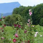 Hotel Pictures: La Ferme Entre Deux Lacs, Saint-Girod