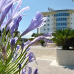 Edra Palace Hotel,  Cassino