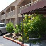 Americas Best Value Inn-Near NRG Park/Medical Center,  Houston