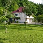 Gonio Villa, Gonio