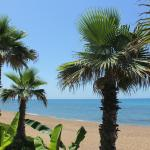 Ionion Beach Apartment Hotel, Arkoudi