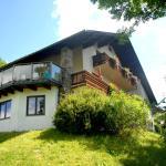 Hotellikuvia: Frühstückspension Wiesenhaus, Miesenbach