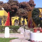 El Nuevo Cantalloc, Nazca