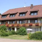 Hotel Pictures: Gasthaus - Hotel Zum Hirschen, Oberried