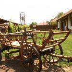 Tulipános vendégház, Golop
