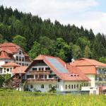 ホテル写真: Gesundheitsresort Agathenhof, Micheldorf