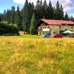 Hotel Pictures: Pension Arberwald, Bayerisch Eisenstein