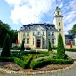 Pałac Borowa, Borowa