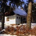 Chata Strelka, Vrútky