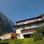 Hotellikuvia: Gasthof Pension Grüner Anger, Hallstatt
