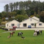 Muckross Riding Stables, Killarney
