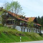 Hotel Pictures: Hotel Mitterdorf, Mitterfirmiansreut