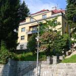 Hotel Pictures: Villa Wildner Výsluní, Lázně Libverda