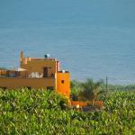 Hotel Pictures: Apartamentos Finca La Cruz, Tazacorte
