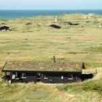 Hotel Pictures: Holiday home Delfinen D- 816, Rødhus