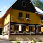 Hotel Pictures: Villa Flamendr, Křižany