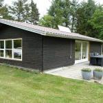 Hotel Pictures: Holiday home Skovsneppevej D- 4136, Blokhus