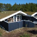 Hotel Pictures: Holiday home Skytten A- 4165, Blokhus