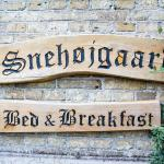 Hotel Pictures: Snehøjgaard Bed & Breakfast, Hobro