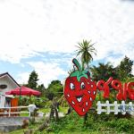 Baan Chomdoi Resort,  Pai